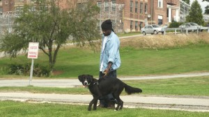 Inmate Dog HandlerThomas and his dog, Byram