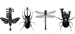 bugs-e1343263144202