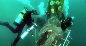 Infidel-net-shipwreck